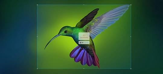 Deepin Screen Recorder