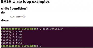 BASH While Loop Examples – Linux Hint