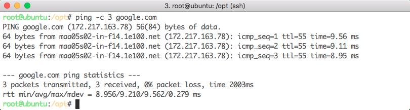 Ping domain n times
