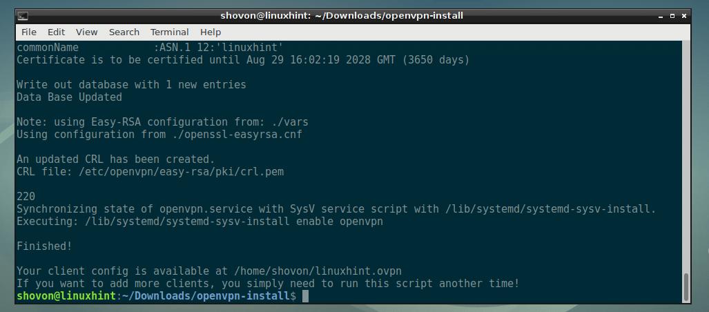 Openvpn Connect Client
