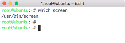Screen command location