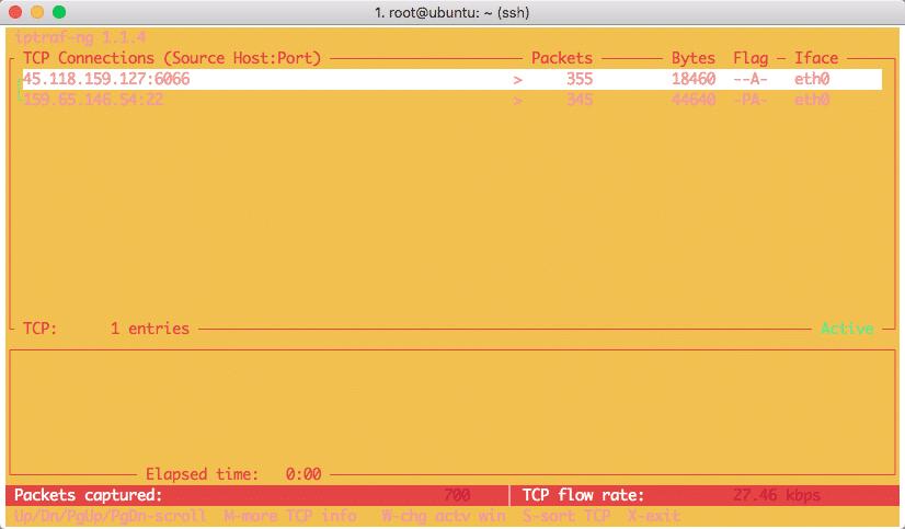 Ubuntu iptraf