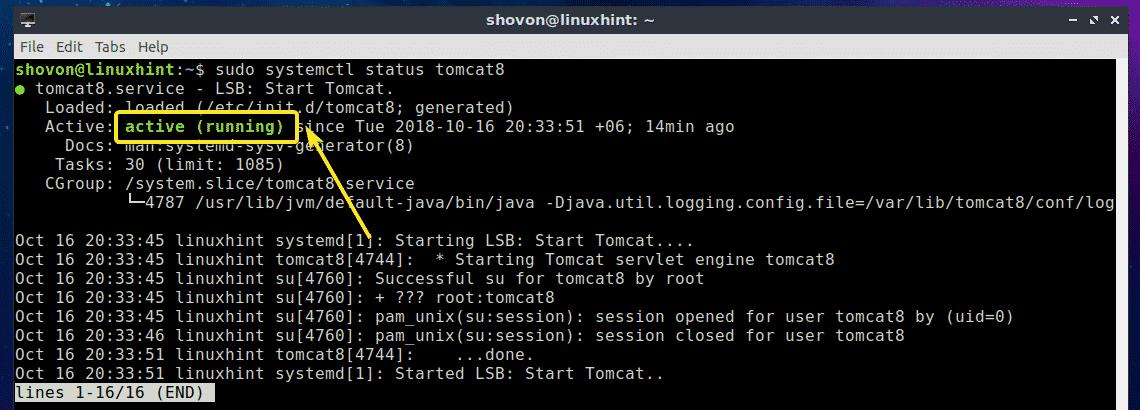 Install Tomcat on Ubuntu – Linux Hint