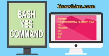 bash yes command