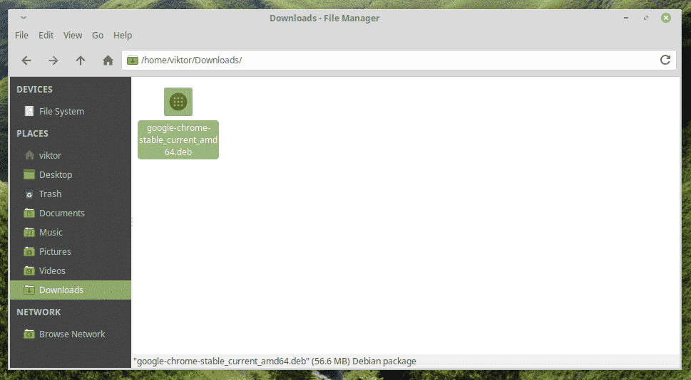 download google chrome for linux mint