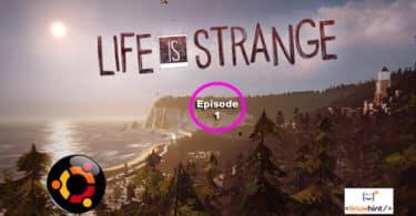 Life is Strange Episode 1 on ubuntu