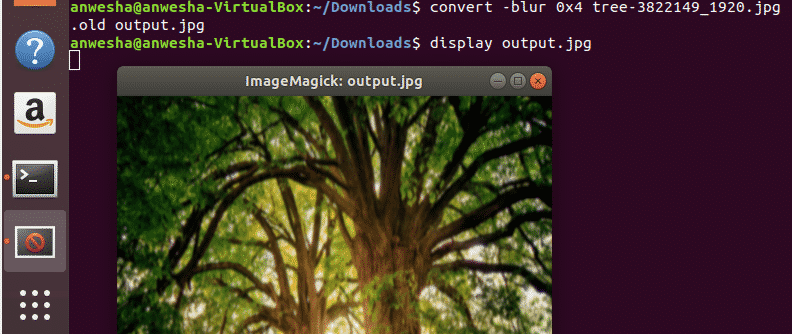 ImageMagick to Sharpen an Image – Linux Hint