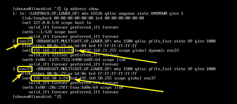 How to Get IP Address in Linux – Linux Hint