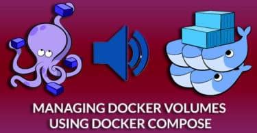 Managing Docker Volumes using Docker Compose