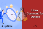Linux Command for Uptime