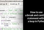 How to use a break and continue statement within a loop in Python