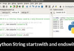 Python String startswith and endswith