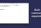 Bash command expansion