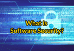 What is Software Security?