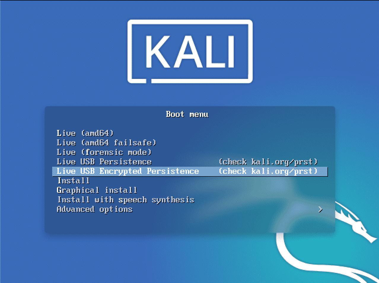 Kali Linux USB Persistence – Linux Hint