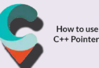 How to use C++ Pointers