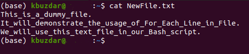 Accessing the Newly Created Text File2