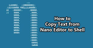 How to Copy Text from Nano Editor to Shell