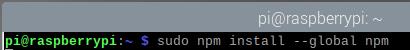 sudo npm install