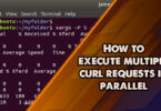 How to execute multiple curl requests in parallel