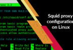 Squid proxy configuration on Linux