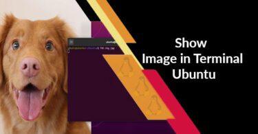 Show Image in Terminal Ubuntu