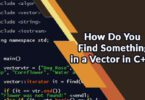 How Do You Find Something in a Vector in C++?