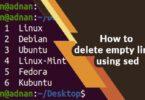 How to delete empty lines using sed